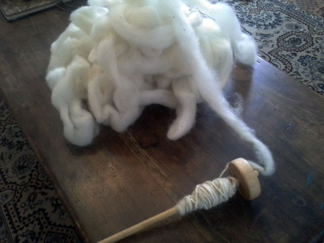 The drop spindle with white fiber-This is NOT the one I dyed. This is what I just started spinning